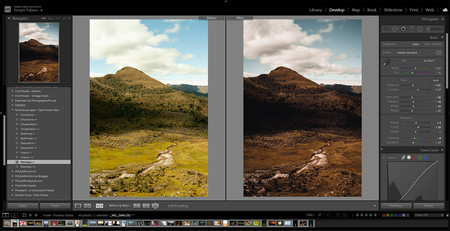 Lightroom presets gratis