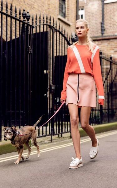 Los perros, víctimas del postureo: ¿y si pudiéramos comprar mascotas como si fueran bolsos?