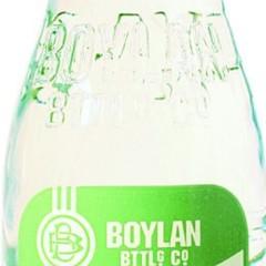 Foto 1 de 15 de la galería botellas-de-boylan en Trendencias Lifestyle