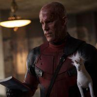Taquilla USA | ¡Deadpool es un maldito fenómeno!