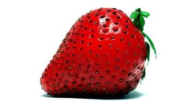 Fresas para la memoria y mucho más