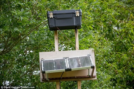 Si tu conexión a Internet es mala, prueba a construir una antena 4G casera