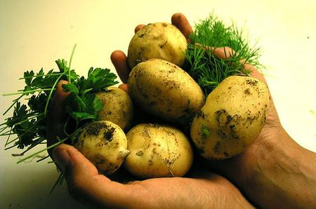 Pure de patata natural, más sano y barato