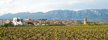 Cisma en el vino riojano: por qué algunas bodegas alavesas han roto con la Denominación de Origen