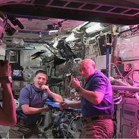 No es jamón, pero por algo se empieza: las lechugas que cultivamos en el espacio son tan buenas como las que cultivamos aquí abajo