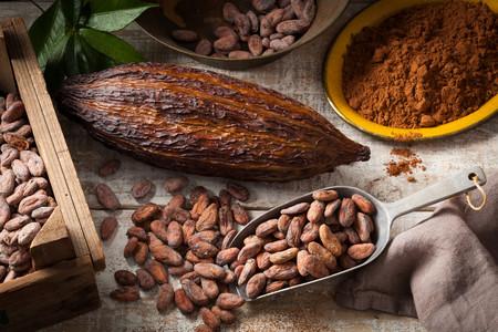 El cacao podría ayudarte a ganar masa muscular
