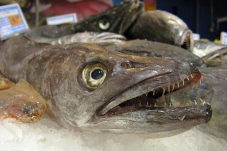 """¿Qué estás comprando cuando compras pescado """"fresco""""?"""