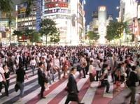 En el 2008 más de la mitad de la población será urbana