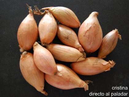 Receta de medallones de solomillo con salsa de chalotas