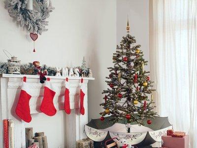 Cazando Gangas para encontrar los árboles de Navidad más baratos