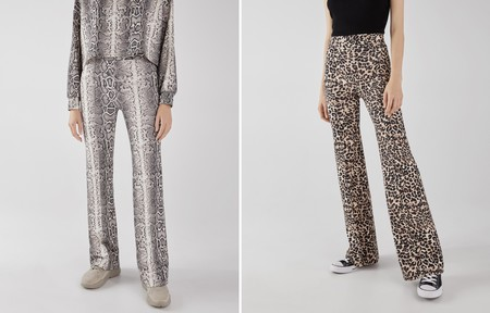 Pantalon Animal Bershka 02