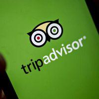La polémica de TripAdvisor: por qué eliminó mensajes donde usuarios señalaron robos y violaciones en la Riviera Maya