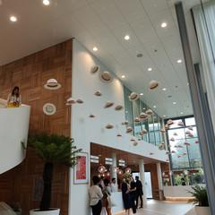 Foto 49 de 71 de la galería oppo-reno-10x-zoom en Xataka