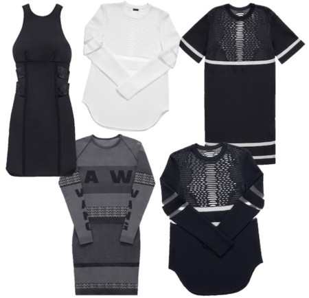 Alexander Wang Hm Collection Dresses