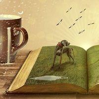 El micromecenazgo, crowdfunding o financiación colectiva para salvar una librería, el caso Delirio