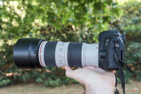 Canon70 200 F4 0462