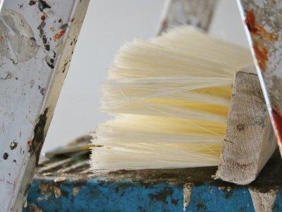 Para pintar paredes y muebles las mejores opciones en Cazando Gangas