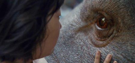 Estalla la polémica en Cannes con 'Okja': abucheos a Netflix, fallo en proyección y Tilda Swinton responde a Almodóvar