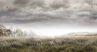 El teaser site del nuevo juego de Kojima hace referencia a 'Metal Gear Solid'