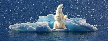 Estamos perdiendo la lucha contra el cambio climático, y aun hoy hay cosas que nadie se ha preguntado