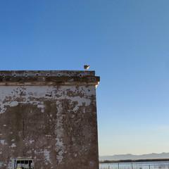 Foto 14 de 48 de la galería oneplus-6t-fotografias en Xataka