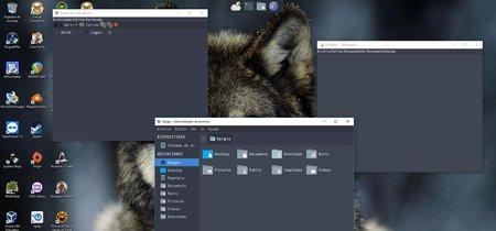 Swan, el entorno gráfico inspirado en Linux que puedes ejecutar en Windows 10