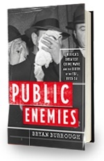 public enemies book
