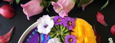Acai Bowls: La moda de Instagram tiene beneficios para tu salud. Adivina cuáles y cómo se elaboran
