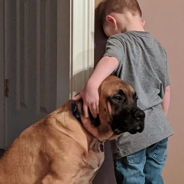 Le castigaron contra la pared, y su perro fue el único en darse cuenta de la necesidad de acompañamiento emocional del niño