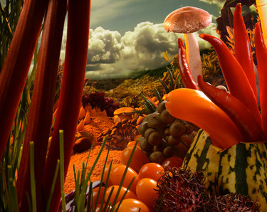 Ganadores del Premio Internacional de Fotografía sorprenden con fotografías con alimentos