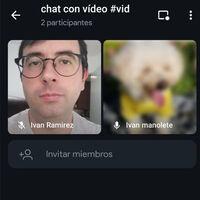 Telegram Beta prueba las videollamadas grupales y añade más personalización para el fondo de los chats