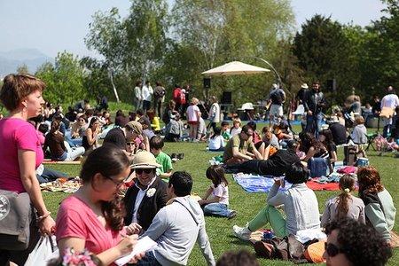 Recuperando el picnic como fiesta común