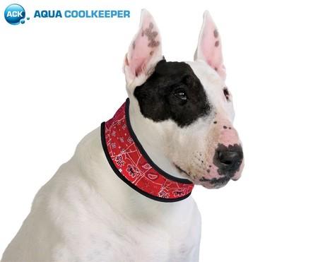 Bandana de refrigeración para perros desde sólo 11,99 euros en Amazon ¡Una forma nueva de refrescar a tu mascota!