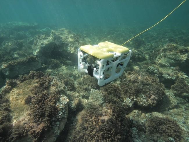 Nace el primer ROV de tamaño reducido y bajo precio