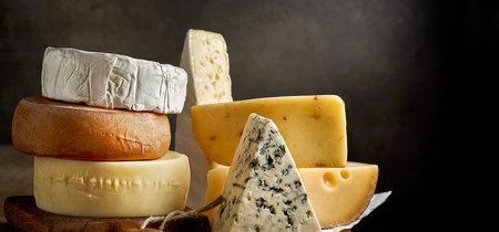 11 quesos aptos para intolerantes a la lactosa muy queseros