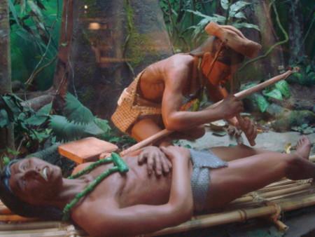 Al rescate de la medicina tradicional maya