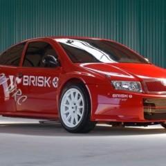 Foto 16 de 19 de la galería brisk-rs-01-wrc en Motorpasión