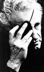 La vida de Nicholas Ray al Cine