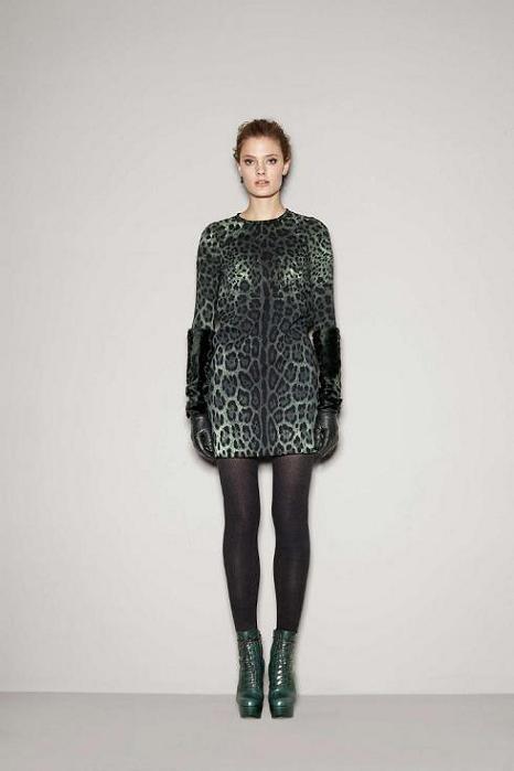 Foto de Dolce & Gabbana Fall 2011 (11/76)
