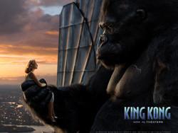 Vamos todos a ver ese mono