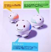 Tera Robots... bonitos pero ¿útiles?