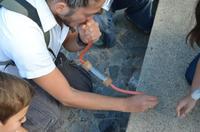 Nuestra experiencia en el taller de la invasión de las hormigas algorítmicas con Kuai Shen organizado por Fundación Telefónica