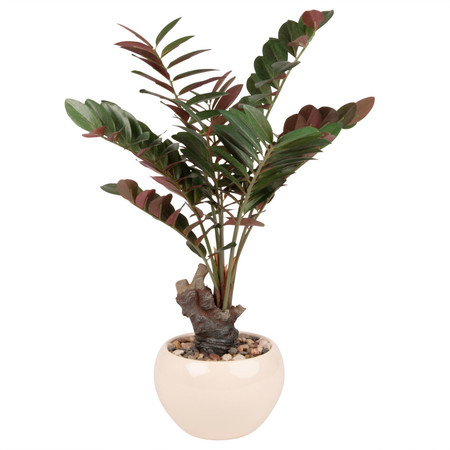 Planta Tropical Artificial En Maceta Blanca 1000 11 29 192893 1