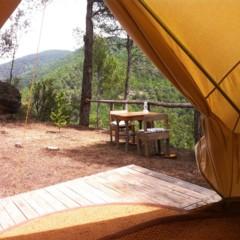 Foto 34 de 35 de la galería forest-days en Trendencias Lifestyle