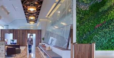 muro-verde-rizon-jet.jpg