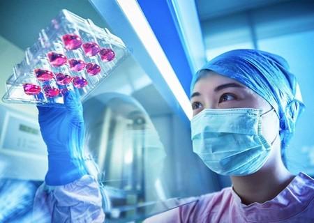 Así es Episkin, la piel sintética que L'Oréal desarrolló en cosmética y terminó salvando vidas