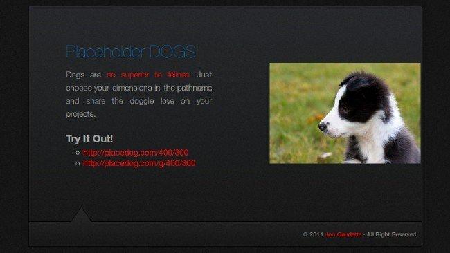 Placedog