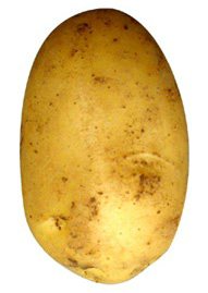 No comas la parte verde de la patata: es tóxica