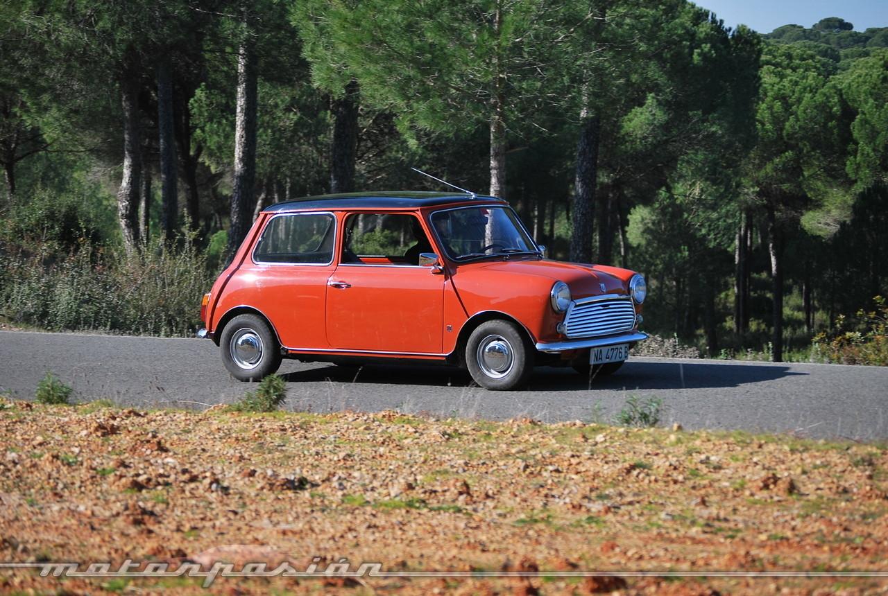Foto de Authi Mini 850 L (prueba) (47/62)