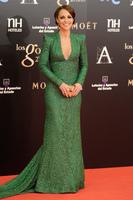 Alfombra roja de los Premios Goya 2013: Paula Echevarria deslumbra de verde esmeralda y con un recogido de inspiración griega